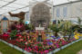 Veolia-Backed Display Wins Gold At The Chelsea Flower Show.