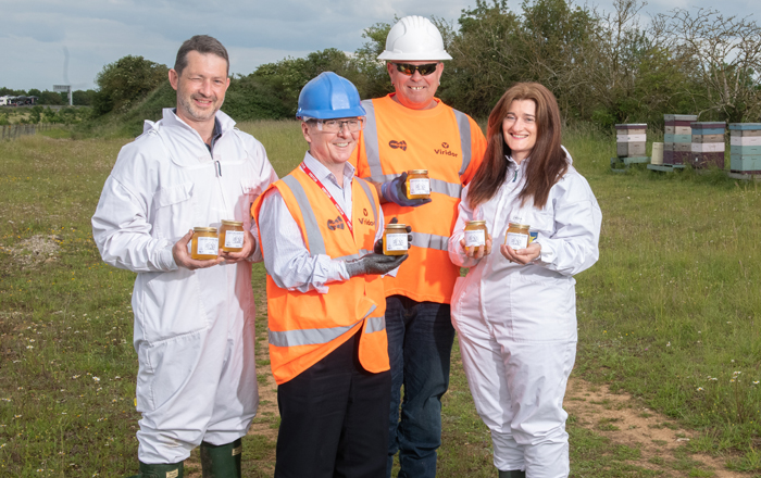 Ardley Landfill Bee-Comes Home To Half A Million Honeybees.