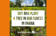 Timberland Partners With Treedom To Plant 26,000 Trees In Ghana.